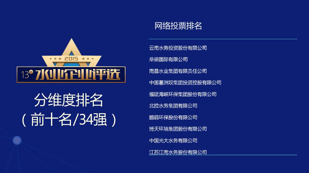 网络投票排名.png