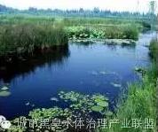 有圖有真相 水環境生態修複技術方案