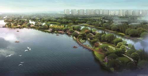 水往何处去?一座海绵城市的生态思维