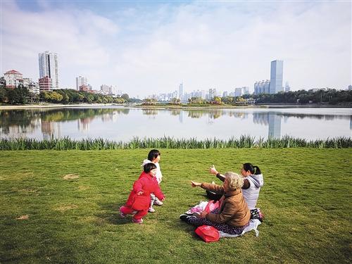 游人在南湖公园湖心岛草坪休闲游玩